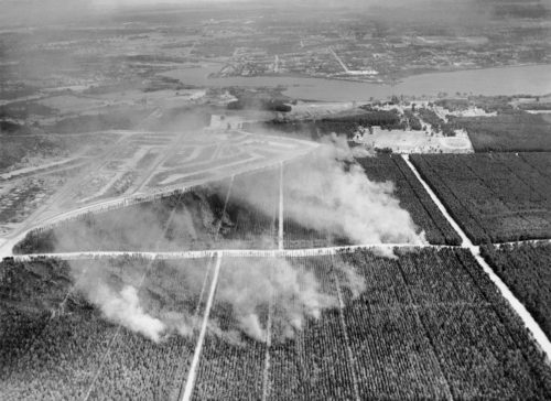 1957 bushfire that cleared the way for WAIT